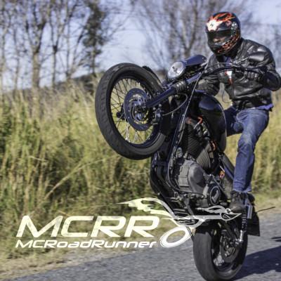 harley davidson 1100 superflow stunt