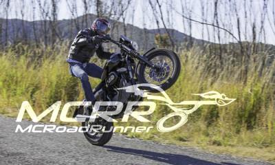 harley davidson stuntman wheelie bike