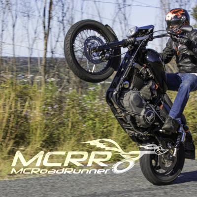 harley davidson wheelie custom bike