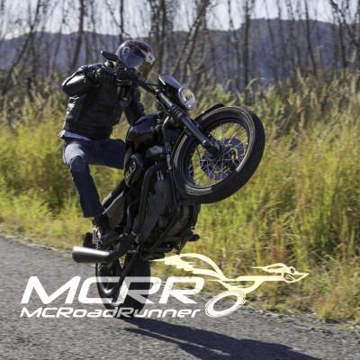 harley davidson stunt bike wheelie